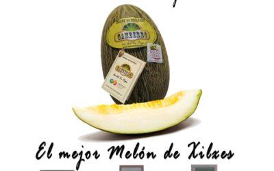Gamberro, el Mejor Melón de Chilches