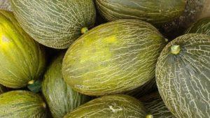 Melón piel de sapo: Beneficios que aporta a la salud